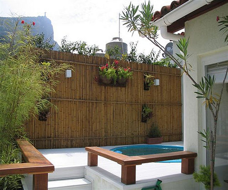 Làm đẹp sân vườn với tre, trúc